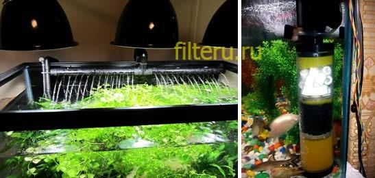 Как установить фильтр в аквариум правильно