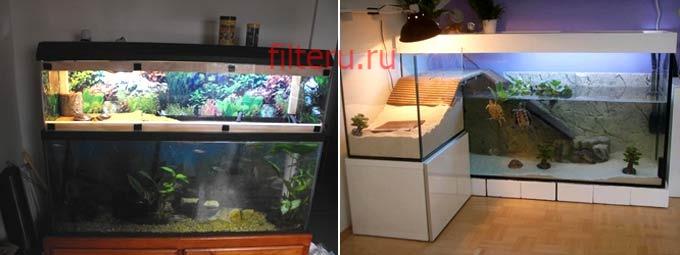 Какой купить фильтр для аквариума с черепахами
