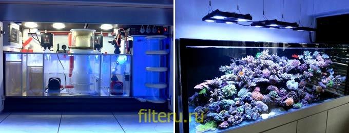 Нужно ли выключать фильтр в аквариуме на ночь