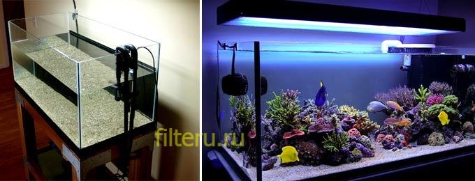 Какие плюсы и минусы у внешнег фильтра для аквариума