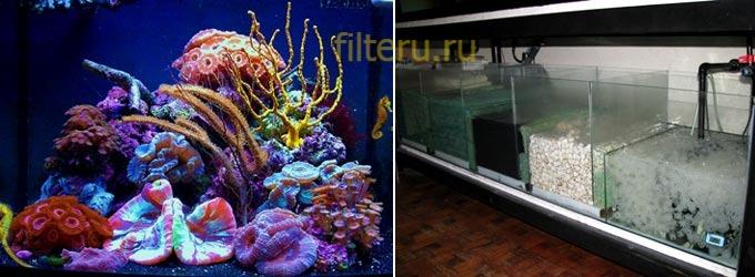 Биофильтр для аквариума