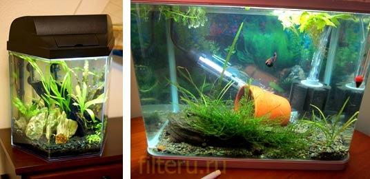 Какой купить фильтр для маленького нано аквариума