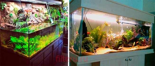 Как долго должен работать фильтр в аквариуме